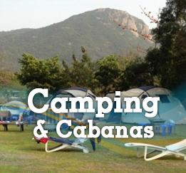primary-camp